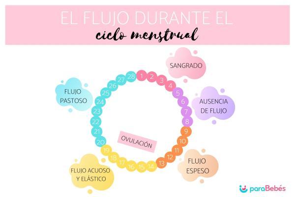 Trucos para quedar embarazada rápido - Tener relaciones cuando estás ovulando