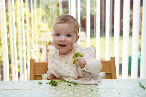 Verduras para bebés de 6 meses - Brócoli
