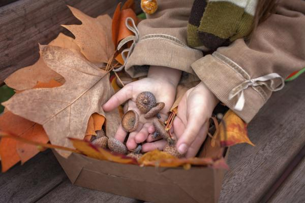 Actividades de otoño para infantil - Mesa sensorial del otoño
