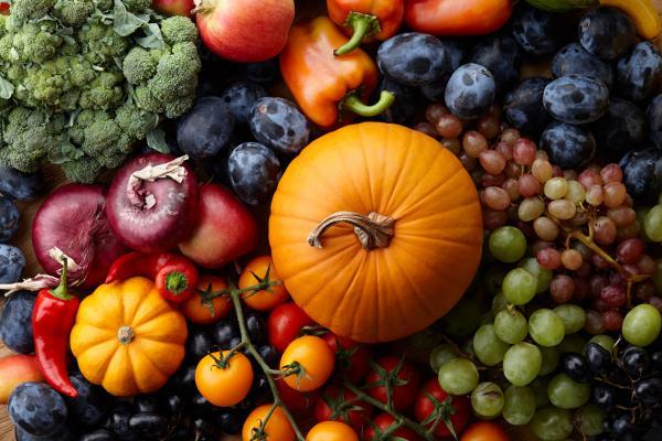 Actividades de otoño para infantil - ¡Qué rico sabe el otoño!