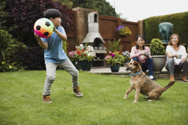 Juegos deportivos para niños - La ligas