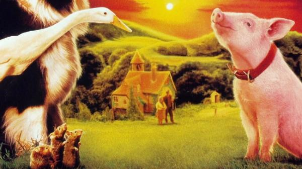 Películas educativas para niños y niñas - Babe, el cerdito valiente