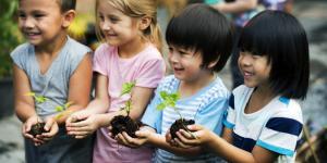 Actividades de agricultura para niños de primaria
