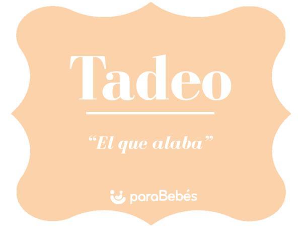 Significado del nombre Tadeo