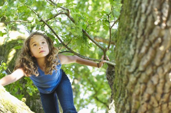 Juegos en la naturaleza para niños - Equilibrio