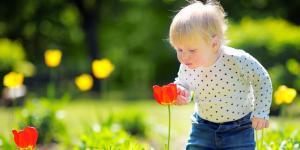 Actividades para la primavera en infantil
