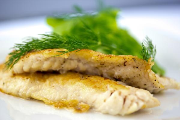 Los mejores pescados para bebés y cómo cocinarlos - Con que frecuencia y cantidad se debe ofrecer pescado al bebé